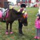 ponnyridning har vi vid olika tillfällen sedan 2008