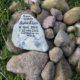 bara några veckor efter kaninen Oscar dog alla andra kaniner också: Ann grät i dagar