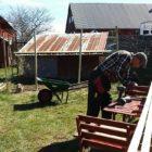 Hühnergehege wird gebaut